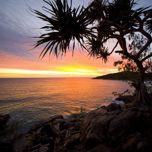 noosa-sunshine-coast-85